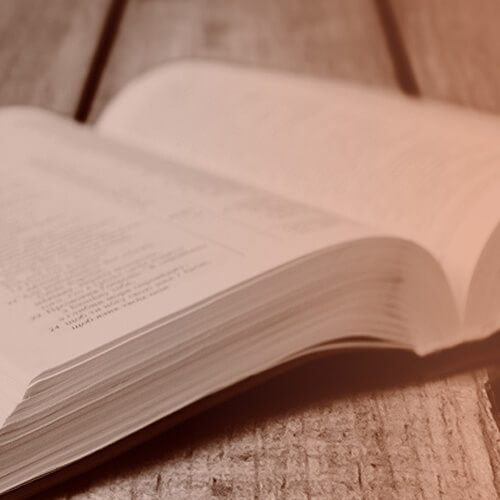 book development